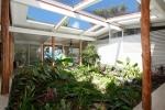 Tropical Courtyard Retreat